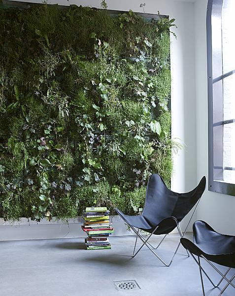 Vertikální zahrada v podobě zelené stěny je originálním zpestřením interiéru - ilustrační obrázek, zdroj.