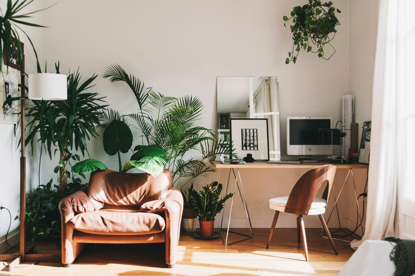Zelenými rostlinami se ve stylu urban jungle nešetří - čím více, tím lépe, zdroj