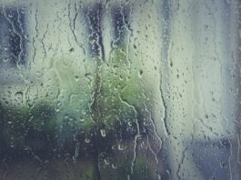 vlhkost na okně